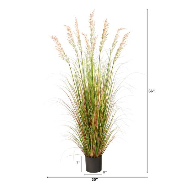 5.5 Plum Grass Artificial Plant - SKU #P1682 - 1