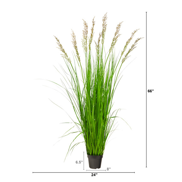 5.5 Plum Grass Artificial Plant - SKU #P1684 - 1
