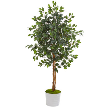 5 Ficus Artificial Tree in White Tin Planter - SKU #T1016