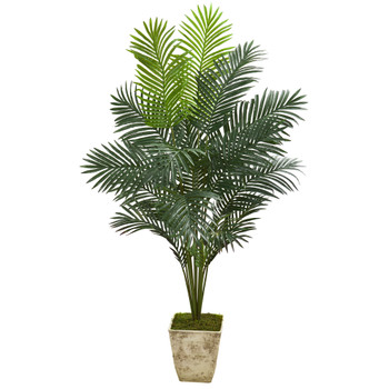 64 Paradise Palm Artificial Plant in Country White Planter - SKU #T1023