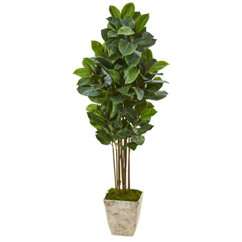 63 Rubber Leaf Artificial Tree in Country White Planter - SKU #T1031
