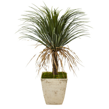 37 Pony Tail Palm Artificial Plant in Country White Planter - SKU #T1033