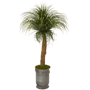 64 Pony Tail Palm Artificial Plant in Copper Trimmed Metal Planter - SKU #T1041