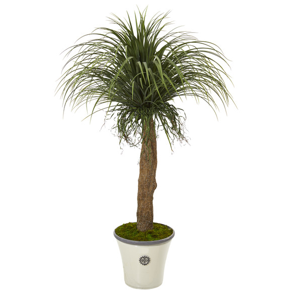 61 Pony Tail Palm Artificial Plant in Decorative Planter - SKU #T1042