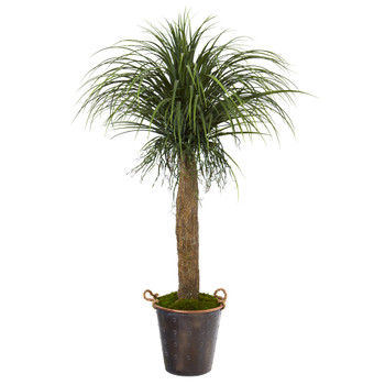 5 Pony Tail Palm Artificial Plant in Decorative Metal Pail with Rope - SKU #T1044