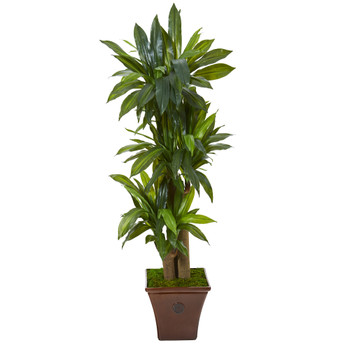 57 Corn Stalk Dracaena Artificial Plant in Brown Planter Real Touch - SKU #T1045
