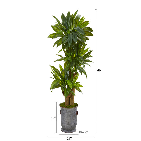 5 Corn Stalk Dracaena Artificial Plant in Vintage Metal Planter Real Touch - SKU #T1049 - 1