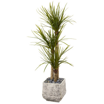 5 Yucca Artificial Tree in White Planter - SKU #T1052