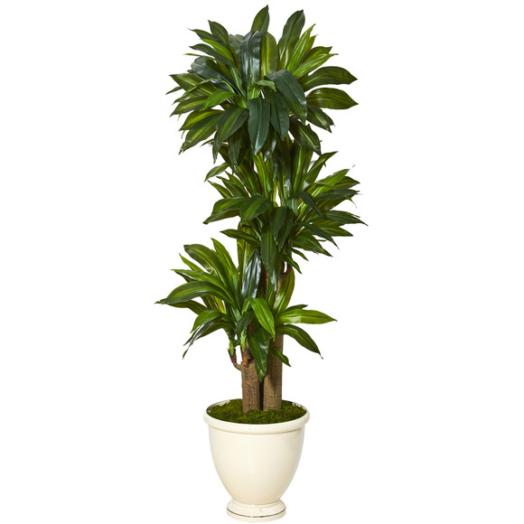 64 Corn Stalk Dracaena Artificial Plant in Urn Planter Real Touch - SKU #T1074