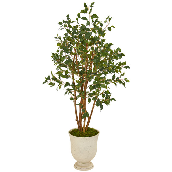 56 Ficus Artificial Tree in Decorative Urn - SKU #T1107