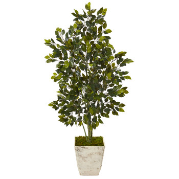 52 Ficus Artificial Tree in Country White Planter - SKU #T1111