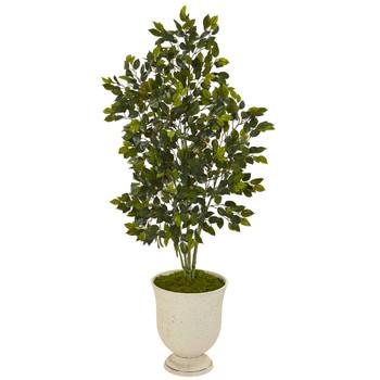 58 Ficus Artificial Tree in Decorative Urn - SKU #T1114