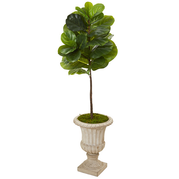 5 Fiddle Leaf Artificial Tree in Sand Finished Urn Real Touch - SKU #T1167