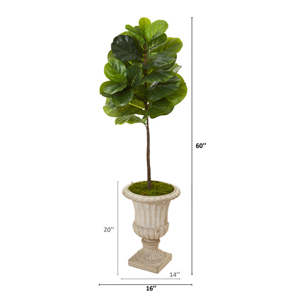 5 Fiddle Leaf Artificial Tree in Sand Finished Urn Real Touch - SKU #T1167 - 1