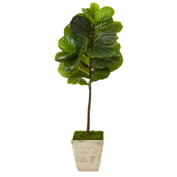 50 Fiddle Leaf Artificial Tree in Country White Planter Real Touch - SKU #T1168