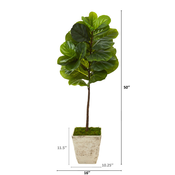 50 Fiddle Leaf Artificial Tree in Country White Planter Real Touch - SKU #T1168 - 1