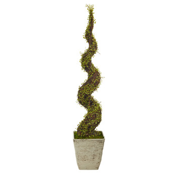 53 Mohlenbechia Spiral Artificial Tree in Country White Planter - SKU #T1338
