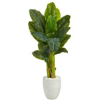52 Triple Stalk Artificial Banana Tree in White Planter Real Touch - SKU #T1359