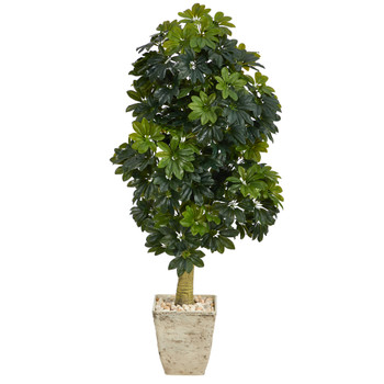 5 Schefflera Artificial Tree in Country White Planter Real Touch - SKU #T1381