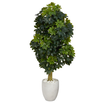 5 Schefflera Artificial Tree in White Planter Real Touch - SKU #T1382