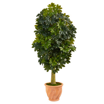 5 Schefflera Artificial Tree in Terra-Cotta Planter Real Touch - SKU #T1383