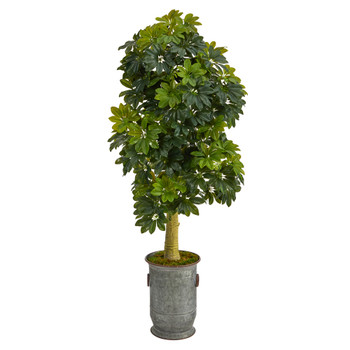 63 Schefflera Artificial Tree in Vintage Metal Planter Real Touch - SKU #T1384