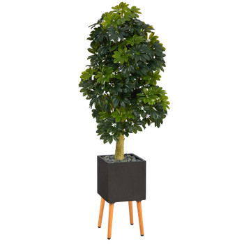 70 Schefflera Artificial Tree in Black Planter with Stand Real Touch - SKU #T1385