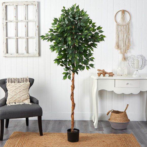 6 Ficus Artificial Tree - SKU #T1441 - 2