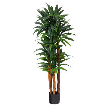 5.5 Dracaena Artificial Tree with Natural Cane Trunk - SKU #T1553