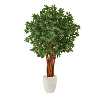 5.5 Lychee Artificial Tree in White Planter - SKU #T2158
