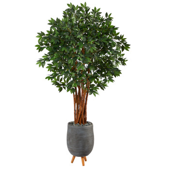 6 Lychee Artificial Tree in Gray Planter with Stand - SKU #T2159