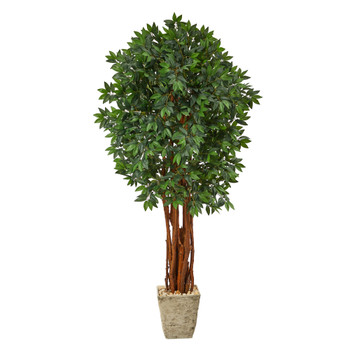 6 Lychee Artificial Tree in Country White Planter - SKU #T2162