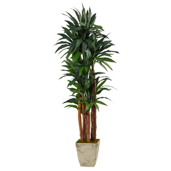 69 Dracaena Artificial Tree in Country White Planter - SKU #T2170