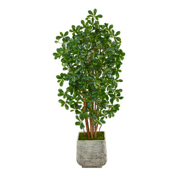 67 Black Olive Artificial Tree with 1365 Bendable Leaves in White Planter - SKU #T2217