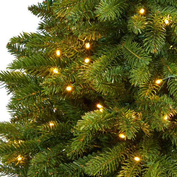 50 Sierra Spruce Natural Look Artificial Christmas Tree with 150 Clear LED Lights in White Planter - SKU #T2253 - 3