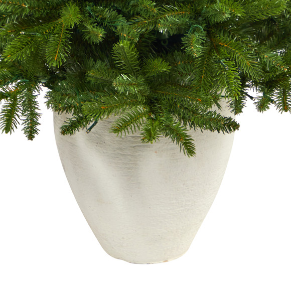 50 Sierra Spruce Natural Look Artificial Christmas Tree with 150 Clear LED Lights in White Planter - SKU #T2253 - 5