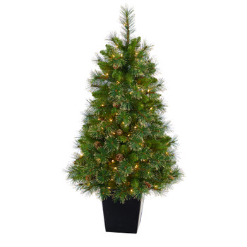 50 Golden Tip Washington Pine Artificial Christmas Tree with 100 Clear Lights Pine Cones and 336 Bendable Branches in Black Metal Planter - SKU #T2292