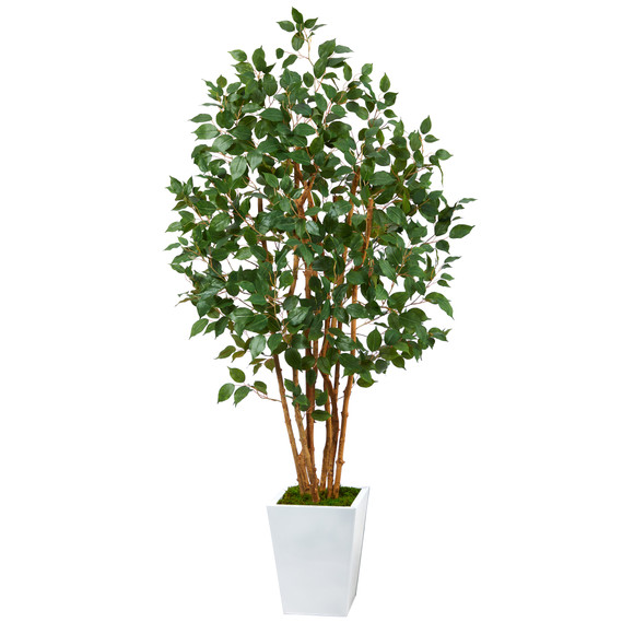 5.5 Ficus Bushy Artificial Tree in White Metal Planter - SKU #T2478