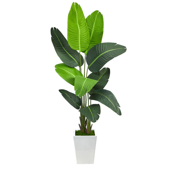 5.5 Travelers Palm Artificial Tree in White Metal Planter - SKU #T2509