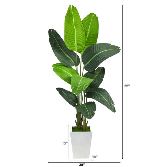 5.5 Travelers Palm Artificial Tree in White Metal Planter - SKU #T2509 - 1