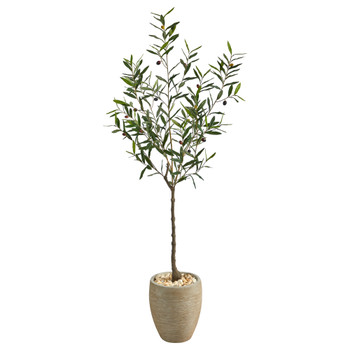 5.5 Olive Artificial Tree in Sand Colored Planter - SKU #T2553