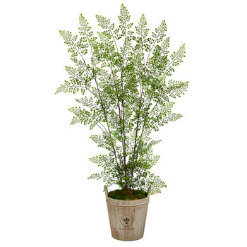 5.5 Ruffle Fern Artificial Tree in Farmhouse Planter - SKU #T2559