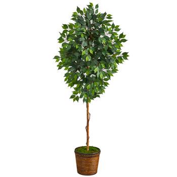 6.5 Ficus Artificial tree in Wicker Planter - SKU #T2581