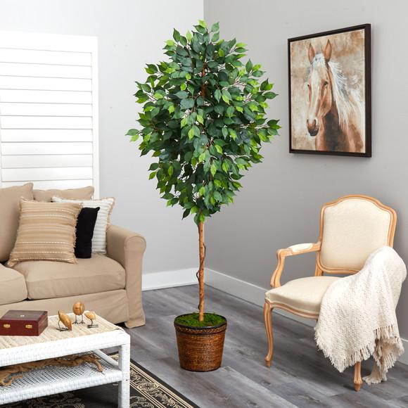 6.5 Ficus Artificial tree in Wicker Planter - SKU #T2581 - 3