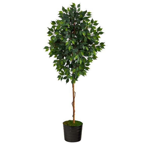 74 Ficus Artificial tree in Black Tin Planter - SKU #T2582