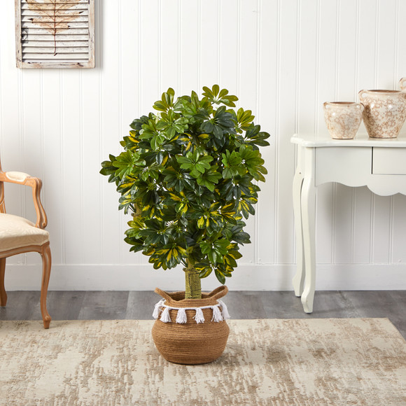4 Schefflera Tree in Boho Chic Handmade Natural Cotton Woven Planter with Tassels Real Touch - SKU #T2933 - 2