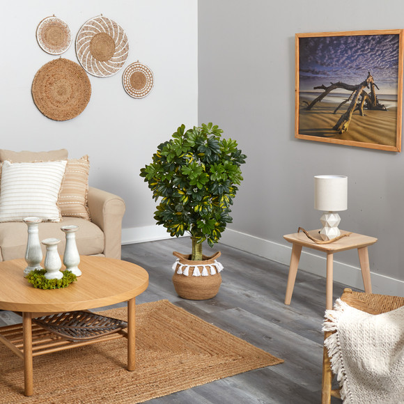 4 Schefflera Tree in Boho Chic Handmade Natural Cotton Woven Planter with Tassels Real Touch - SKU #T2933 - 3