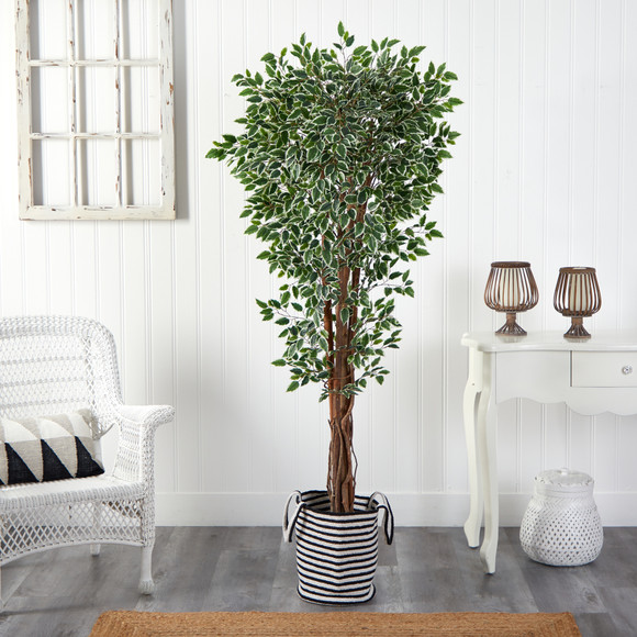 70 Variegated Ficus Tree in Handmade Black and White Natural Jute and Cotton Planter UV Resistant - SKU #T2974 - 2
