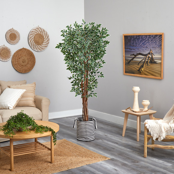 70 Variegated Ficus Tree in Handmade Black and White Natural Jute and Cotton Planter UV Resistant - SKU #T2974 - 3