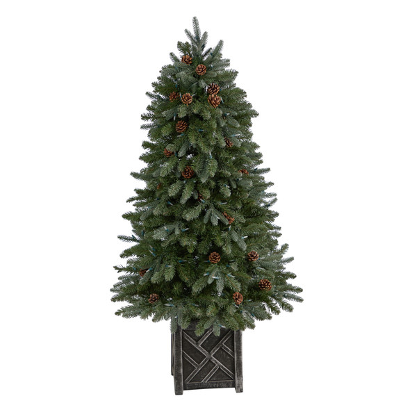 5 Colorado Fir Flocked Dusted Tree with 300 LED Lights 514 Branches and Pinecones - SKU #T3283 - 2